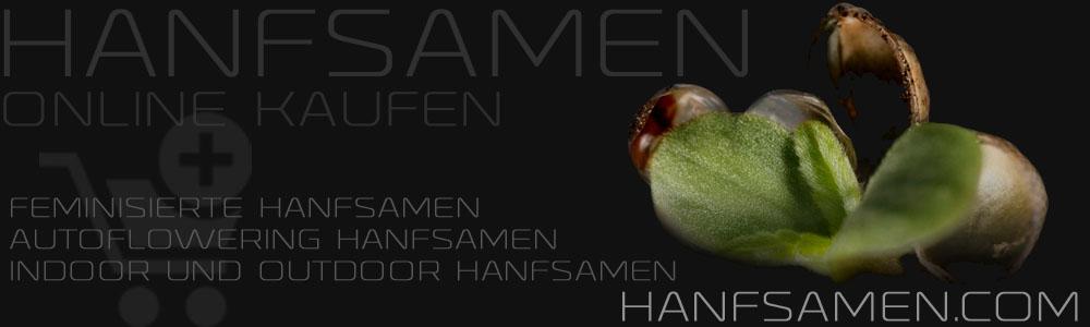 hanfsamen
